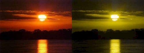O que vê e como se sente um daltônico?