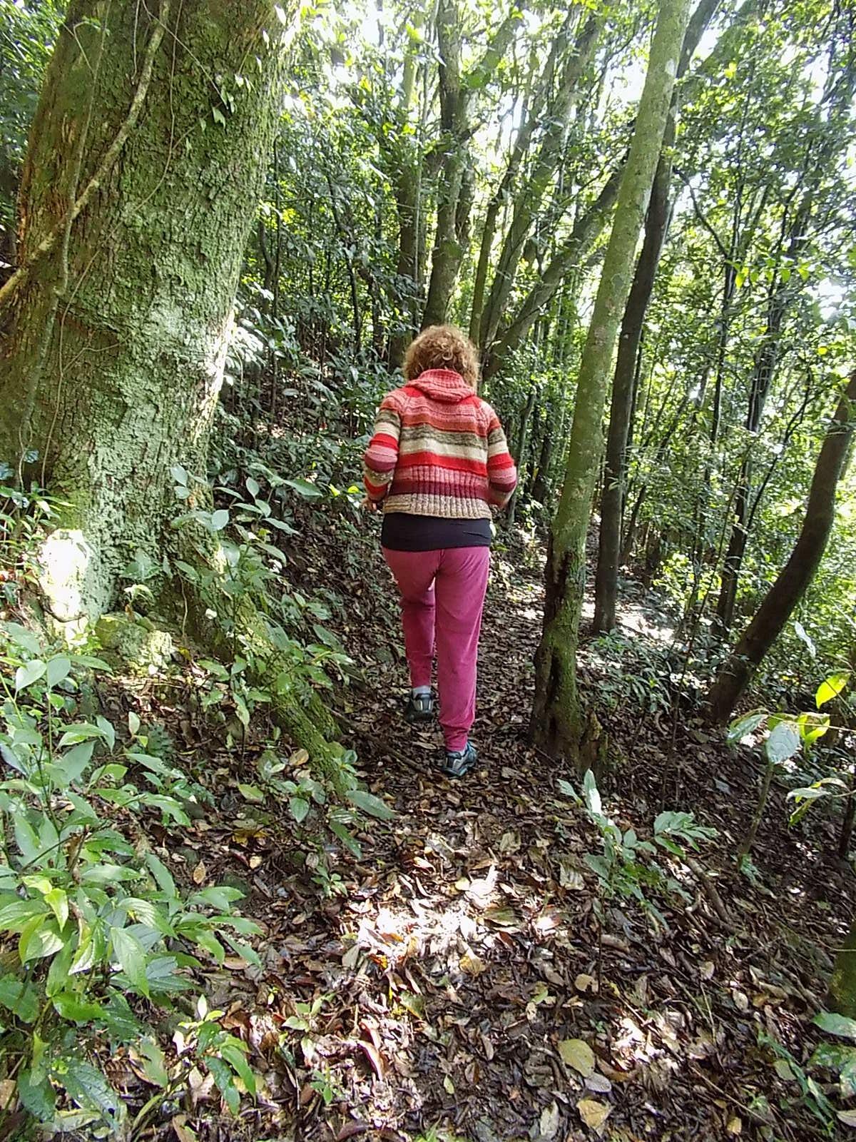 Elena entusiasmada com a trilha. Doce ilusão   Foto: Milton Ribeiro