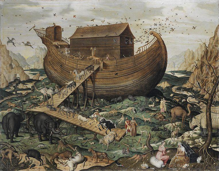 Noé, de Pedro Tamen