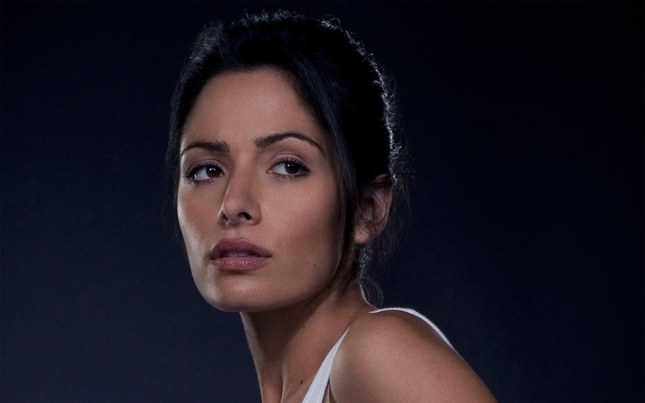 Sara Shahi