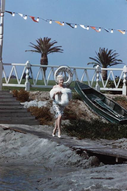 Some Like It Hot color (13)