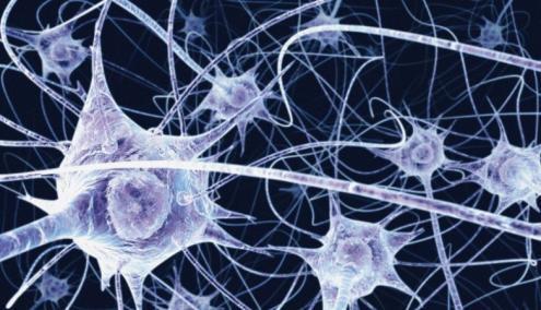 Alzheimer: descoberta forma de eliminar primeiros sintomas