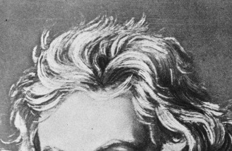 beethoven-hair