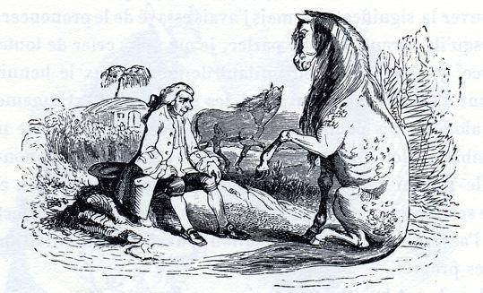 Gulliver, os Houyhnhnms e os Yahoos