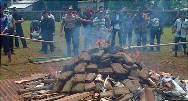 Polícia indonésia queima 3,3 toneladas de maconha e enfumaça toda uma cidade